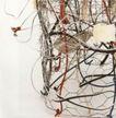 米歇尔.布韦作品集0021,米歇尔.布韦作品集,世界设计名家,围栏 绳子 枝条
