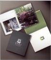 建筑地产0042,建筑地产,中国优秀商业设计,绿洲 图片 宣传