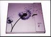 时尚精品0023,时尚精品,中国优秀商业设计,文件夹 文件 外壳