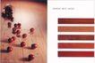 时尚精品0038,时尚精品,中国优秀商业设计,水果 地板 樱桃