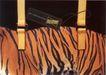 公益0043,公益,中国广告作品年鉴2006,夹子 皮制品 虎皮