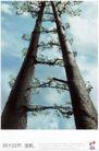 文化公共服务及其它0001,文化公共服务及其它,中国广告作品年鉴2006,相依 拥抱 参天大树  由下向上  与大自然,接轨