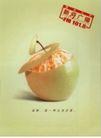 文化公共服务及其它0004,文化公共服务及其它,中国广告作品年鉴2006,橘肉 苹果  皮 味道 结合