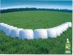 美容卫生用品0030,美容卫生用品,中国广告作品年鉴2006,草坪 白色软垫 青草