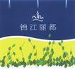 锦江丽都02,华东VI专辑,中国房地产广告年鉴2006,