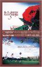 广告0320,广告,中国房地产广告年鉴2006,