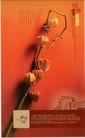 广告0335,广告,中国房地产广告年鉴2006,