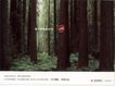 天一广告0009,天一广告,中国设计机构年鉴,森林 迷路 指示 方向 走出 困境