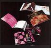 广东天艺广告0005,广东天艺广告,中国设计机构年鉴,美在花城 写真集 专访 插图  诱惑