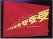 金海岸之星商业设计0015,金海岸之星商业设计,中国设计机构年鉴,受  爱  由小到大 变化 伴随