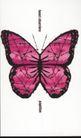 封面设计之抽象与意象0060,封面设计之抽象与意象,书籍装帧设计,蝴蝶 展开的翅膀 美丽的花纹