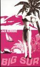 封面设计之抽象与意象0061,封面设计之抽象与意象,书籍装帧设计,比基尼女郎