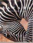 封面设计之摄影与绘画0066,封面设计之摄影与绘画,书籍装帧设计,斑马条纹