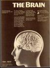 版式设计之图文配合0014,版式设计之图文配合,书籍装帧设计,头 人脑 内部 组成 开发 潜力