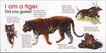 版式设计之图文配合0036,版式设计之图文配合,书籍装帧设计,老虎 Tiger 凶狠