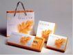 保健0033,保健,华文设计年鉴-包装卷,树叶 橙色 袋装