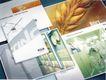 企业0110,企业,华文设计年鉴-型录卷,麦子 风景画