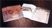 企业0111,企业,华文设计年鉴-型录卷,书刊 刊物