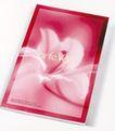 服装美容0001,服装美容,华文设计年鉴-型录卷,百合 花蕊 鲜艳 红色 纯洁