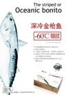 速冻鱼肉招贴,POP海报模板一,商业广告模板,深冷金枪鱼 底温 Ocean