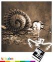 儿童摄影服务形象海报,POP海报模板八,商业广告模板,睡觉 蜗牛 模拟 小孩 造型