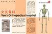 骨科医院推介,POP海报模板六,商业广告模板,文氏骨科 骨骼 模型