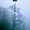 陈卫中03,十佳摄影师,广东摄影年鉴2006,雾气 松树 景色