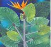 广东广告获奖作品0135,广东广告获奖作品,广东摄影年鉴2006,树叶  花朵  根茎