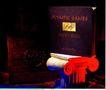 广东广告获奖作品0139,广东广告获奖作品,广东摄影年鉴2006,中国节 古典  造型