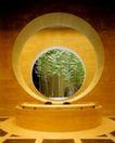 推荐摄影师0079,推荐摄影师,广东摄影年鉴2006,室内植物