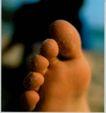 文教类02,摄影年鉴,广东摄影年鉴2006,脚指头 细沙 朦胧