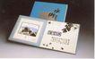 广东优秀作品集0054,广东优秀作品集,广告经典作品,水乡 画作 美术
