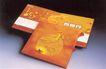 广东优秀作品集0056,广东优秀作品集,广告经典作品,龙 月亮 音像