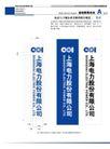 中国电力0026,中国电力,整套VI矢量素材,上海电力股份有限公司 上海电力股份有限公司基础识别系统 竖条