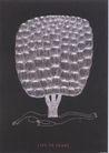 20世纪日本设计师作品集0123,20世纪日本设计师作品集,日本广告专集,