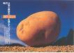 日本平面设计年鉴20060166,日本平面设计年鉴2006,日本广告专集,时代 神户 大土豆