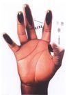 日本海报设计0036,日本海报设计,日本广告专集,手指  掌纹 手掌