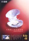 获奖作品一0067,获奖作品一,第十一届中国广告节作品,珍珠蚌壳