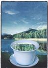 获奖作品二0089,获奖作品二,第十一届中国广告节作品,茶杯 山林 河流