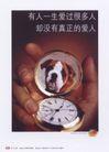 获奖作品二0099,获奖作品二,第十一届中国广告节作品,怀表 宠物