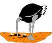 鸟类漫画0660,鸟类漫画,动物,