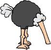 鸟类漫画0661,鸟类漫画,动物,