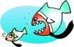 水中动物0973,水中动物,动物,