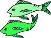 水中动物1003,水中动物,动物,