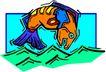 水中动物1013,水中动物,动物,
