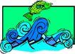 水中动物1015,水中动物,动物,
