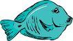 海洋动物2144,海洋动物,动物,