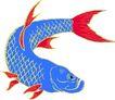 海洋动物2146,海洋动物,动物,