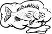海洋动物2150,海洋动物,动物,