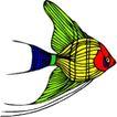 海洋动物2154,海洋动物,动物,